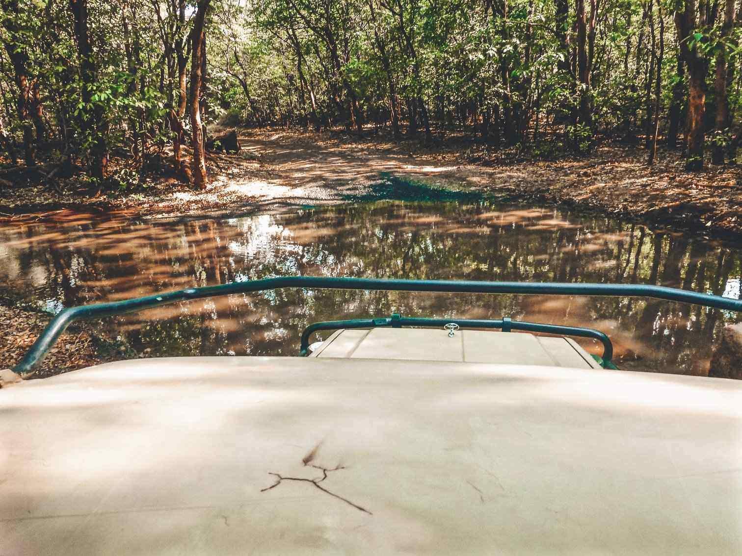 Tanzanian Safari Jeep