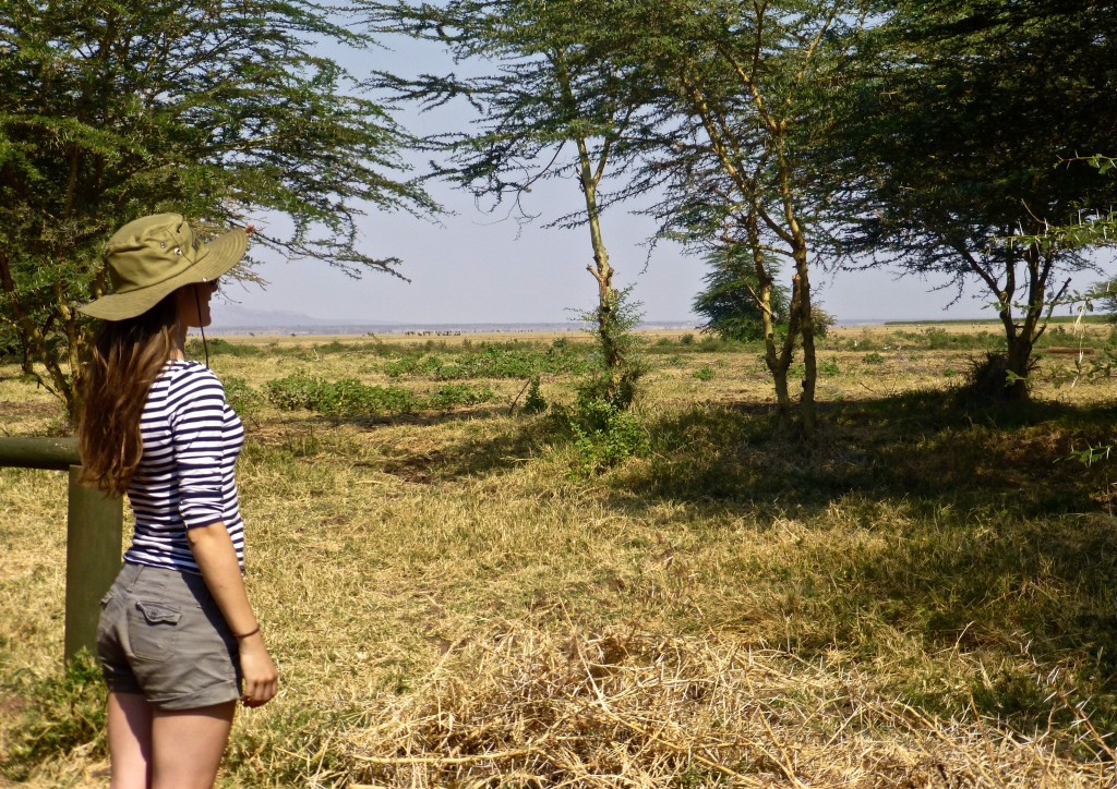 Lake Manyara Safari, Tanzania