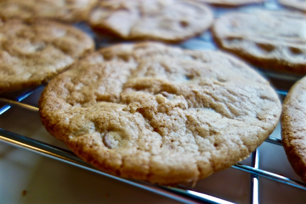 Gluten Free Cookies with Choc Chips