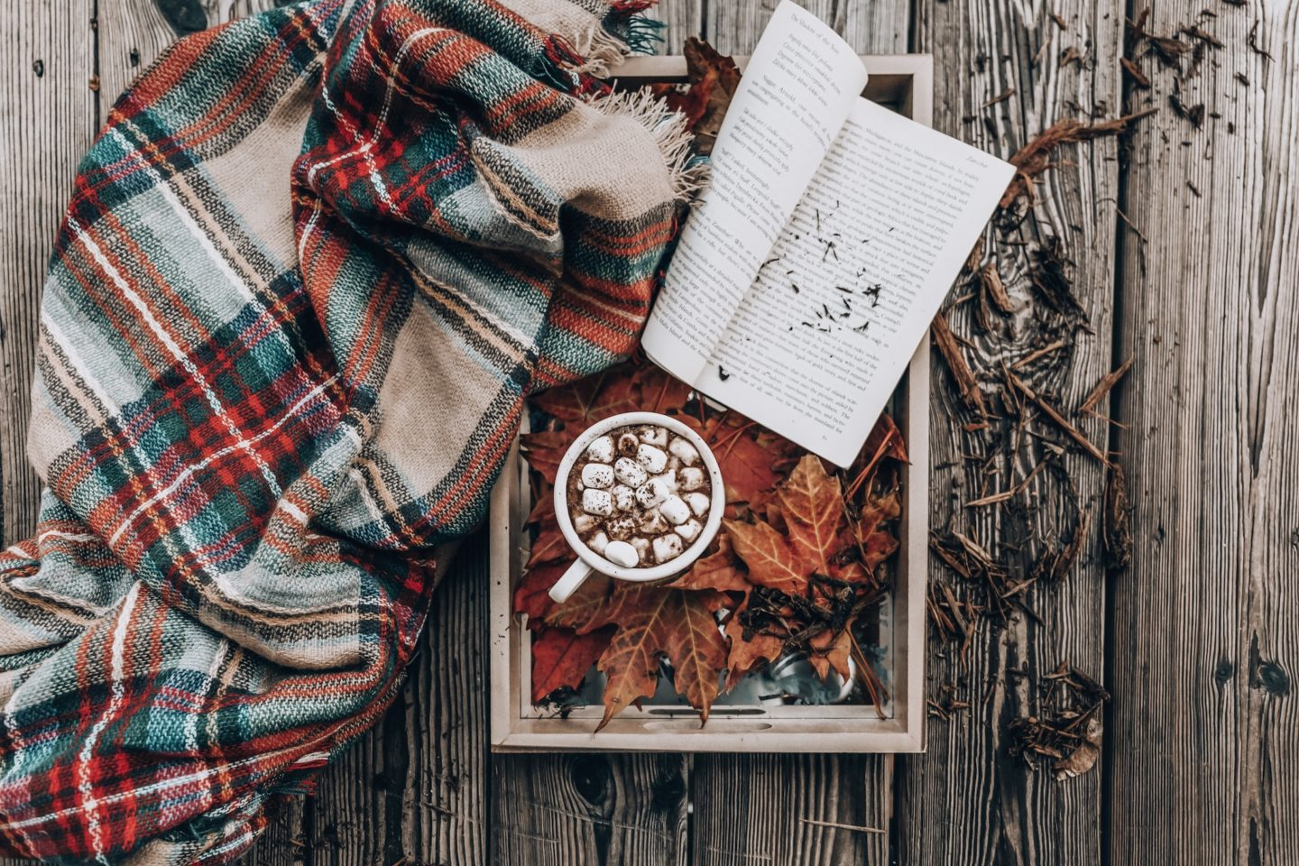 5 Reasons to love Autumn