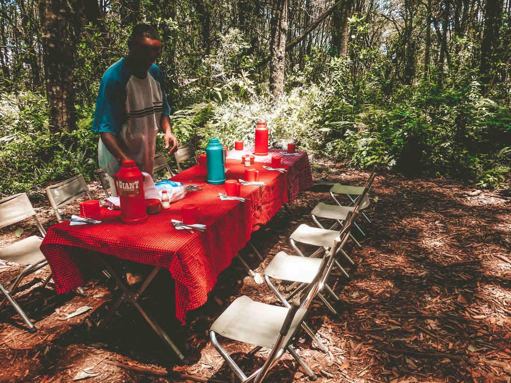 Kilimanjaro Rainforest Lunch