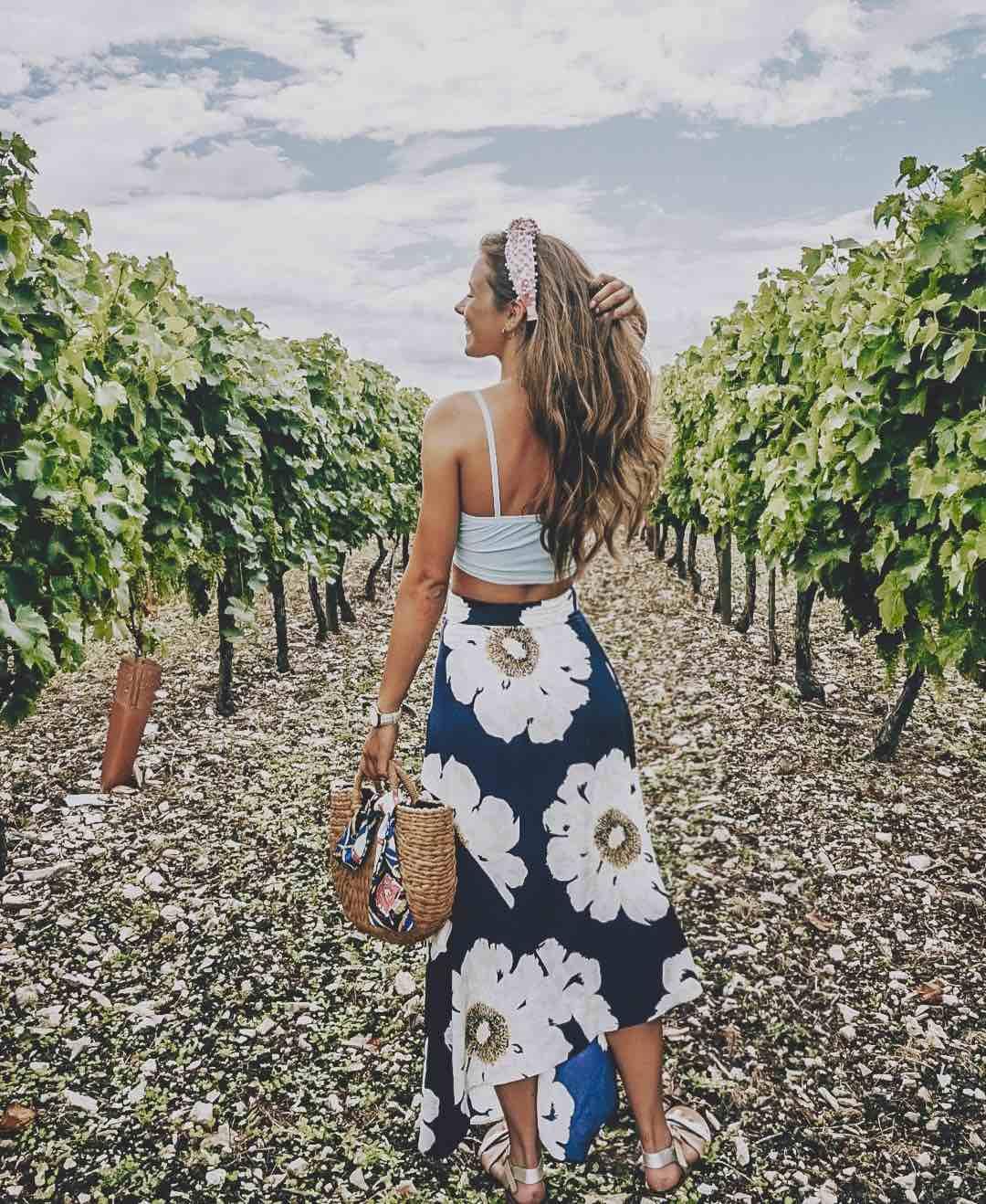 Cognac Vines